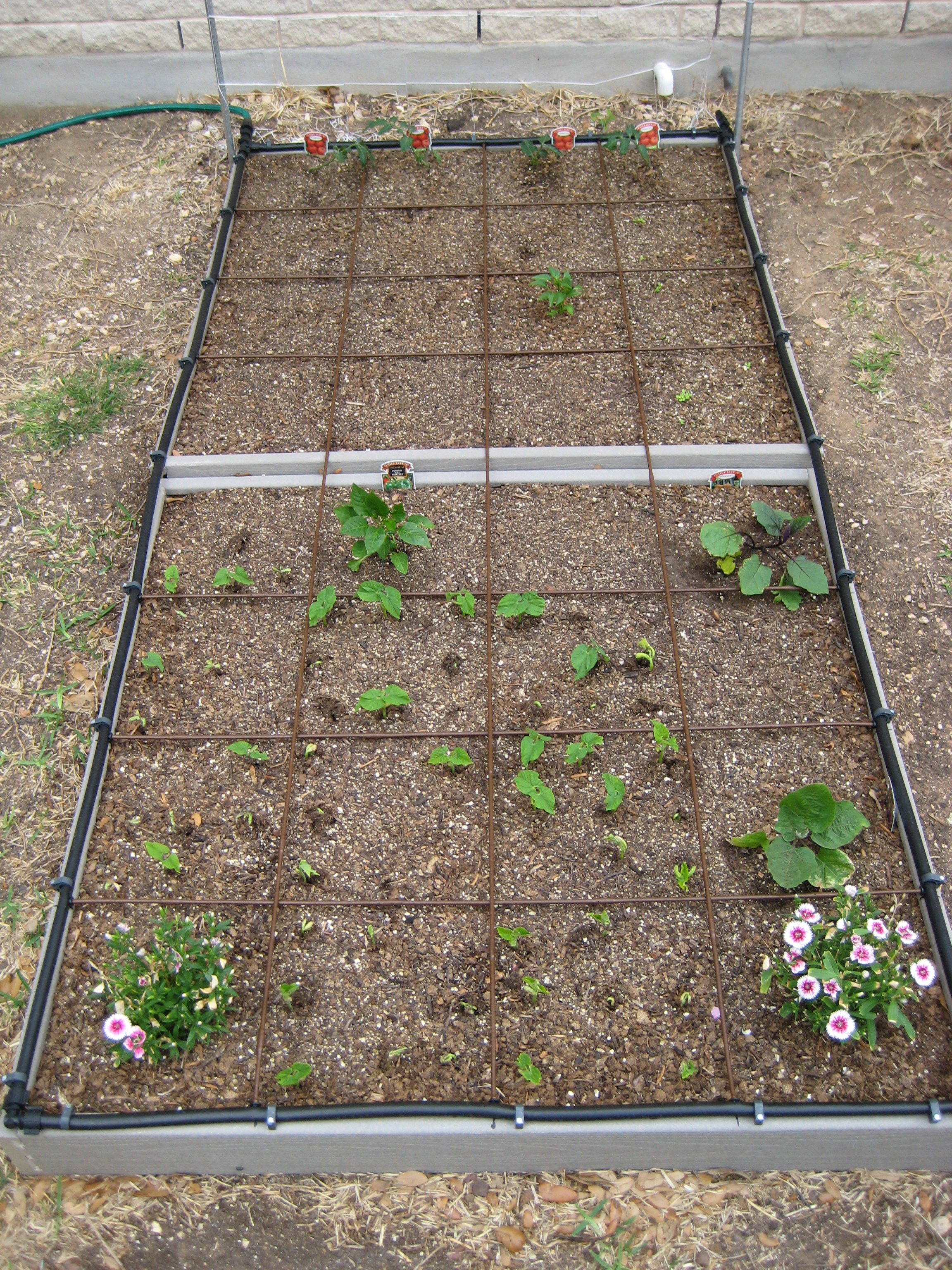 Raised Bed Gardening The How Do Gardener