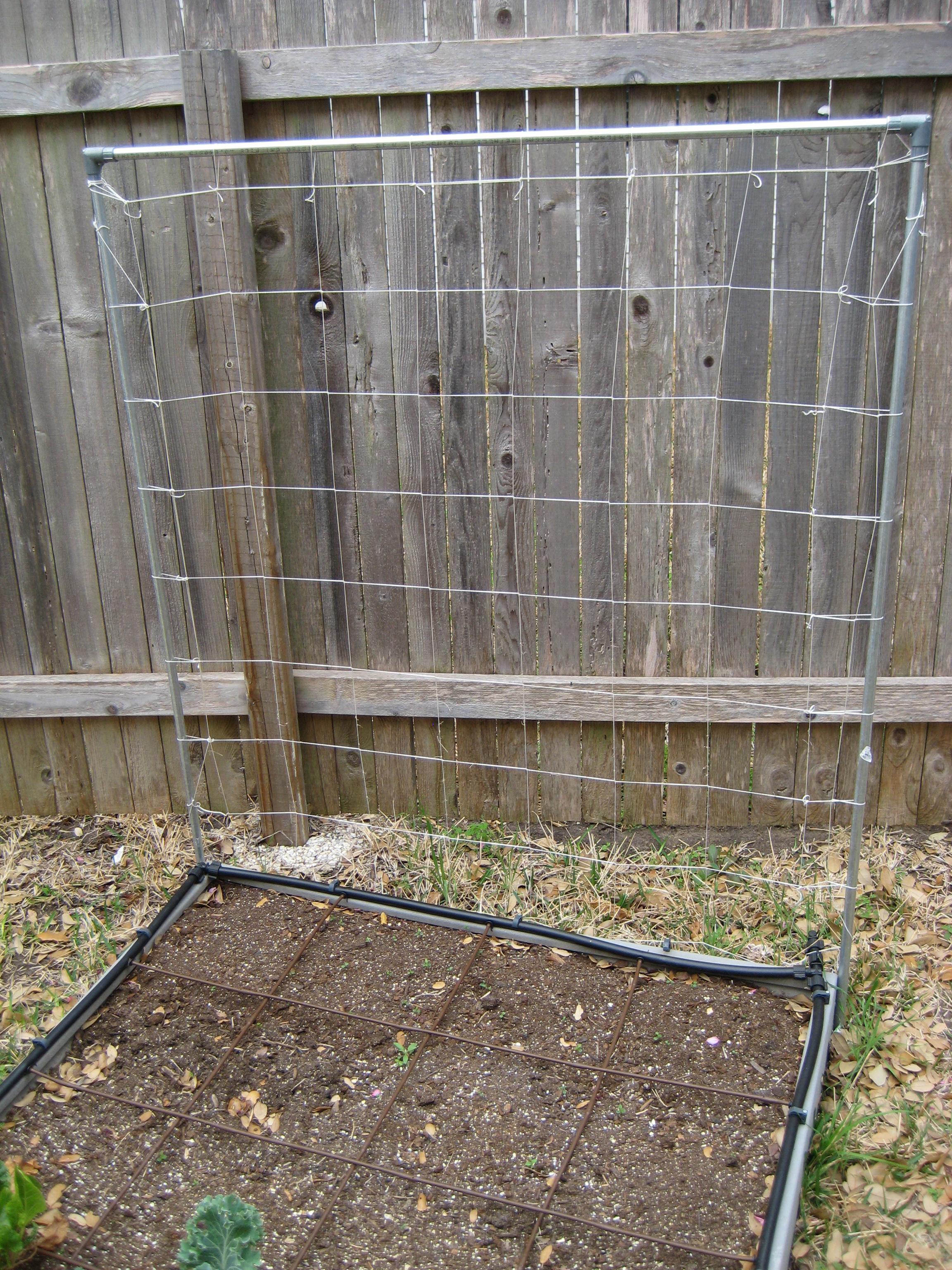 Raised Bed Gardening The How Do Gardener